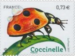 2017coccinelle_feuille_v.jpg